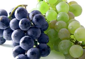 productos-uvas-frutas-castuo