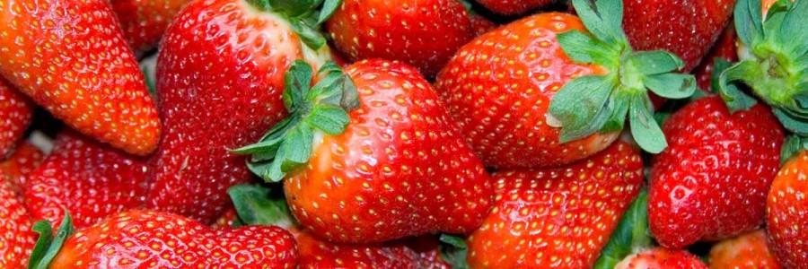 Bombones de fresas