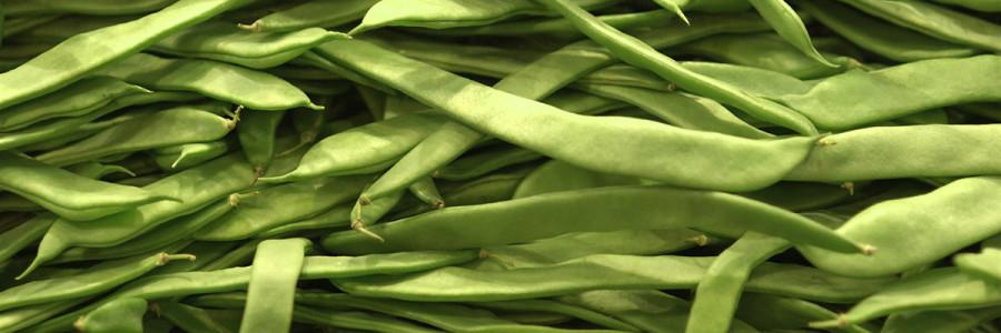 Ensalada de lentejas con judías verdes