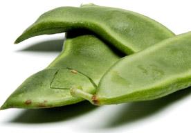 productos-judias-frutas-castuo